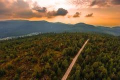 Nordlig svart skog Fotografering för Bildbyråer