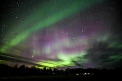 Nordliga lampor över Island Arkivbilder