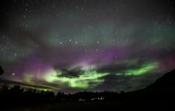 Nordliga lampor över Island Royaltyfri Fotografi