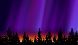 Nordliga lampor Royaltyfri Foto