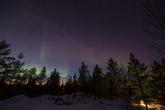 Nordliga ljus över en skog i kullarna av Inari, Finland royaltyfria foton