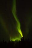 Nordliga ljus över Lapland Arkivbild
