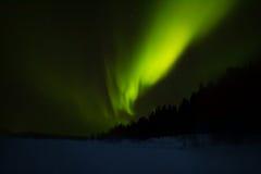 Nordliga ljus över Lapland Royaltyfria Foton