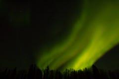 Nordliga ljus över Lapland Royaltyfri Bild