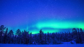 Nordliga ljus över vintern Forest Time Lapse arkivfilmer