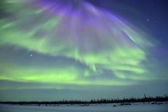 Nordliga ljus för lilor och för gräsplan Arkivbilder