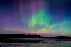 Nordliga ljus, morgonrodnad BorealisN Arkivbild