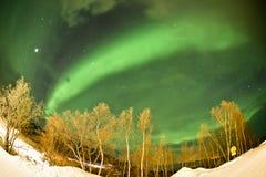 Nordliga ljus (norrsken) arkivbilder