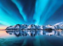 Nordliga ljus och snö täckte berg i Lofoten öar arkivbilder