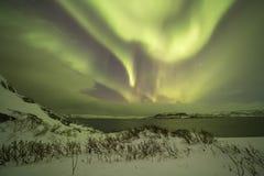 Nordliga ljus på Kola Peninsula Teriberka Murmansk regio arkivfoto