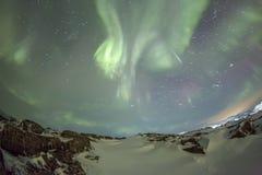 Nordliga ljus på Kola Peninsula Teriberka Murmansk regio Arkivfoton