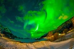 Nordliga ljus skiner ljust och härligt ovanför skarpa maxima och sjöar av Lofoten berg Arkivfoton