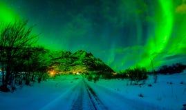 Nordliga ljus skiner ljust och härligt ovanför skarpa maxima och sjöar av Lofoten berg Fotografering för Bildbyråer