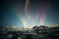 Nordliga ljus över den arktiska tidvattenglaciären - Spitsbergen, Svalbard Royaltyfri Foto