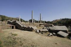 Nordliga Stelae parkerar i Axum Royaltyfria Foton