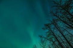 Nordligt ljus Arkivbilder