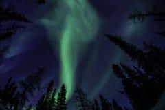 Nordligt ljus Arkivfoto