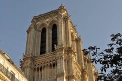 Nordligt torn av den Notre-Dame domkyrkan, Paris, Frankrike Fotografering för Bildbyråer
