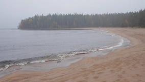 Nordnaturlandschaft von See und von Wald stock video footage