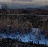 NordOssetien - Alania, Russische Föderation lizenzfreie stockfotografie