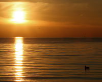 nordostlig solnedgång Arkivbilder
