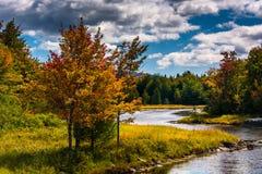 Nordostnebenfluß, auf Berg-einsamer Insel im Stangen-Hafen, Maine Lizenzfreie Stockfotos