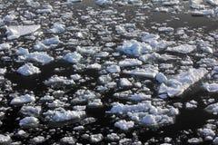 Nordpolen 2016 Isen och öppningarna på parallell 84-88 Arkivbild