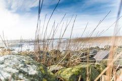 Nordseeseite Wremen Lizenzfreies Stockfoto