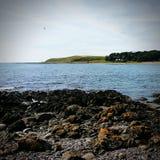 Nordsjönkust royaltyfria bilder