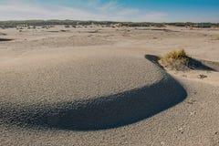Nordsjönstrand av ön Terschelling i Nederländerna Royaltyfri Foto