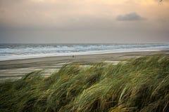 Nordsjönstrand på stormig dag Royaltyfria Bilder