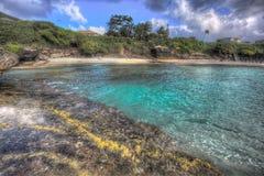 Nordstrand Kaneohe Marine Corps Base Hawaii Lizenzfreies Stockfoto