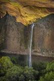 Nordtafelberg-ökologische Reserve, Oroville, Kalifornien lizenzfreie stockfotos
