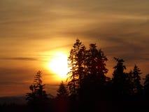 Nordvästlig Oregon solnedgång 2015 Royaltyfri Bild
