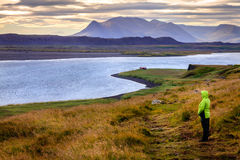 Nordvästliga Island Fotografering för Bildbyråer