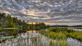 Nordvattnet skog sjö i Hokensas naturreserv Royaltyfri Foto