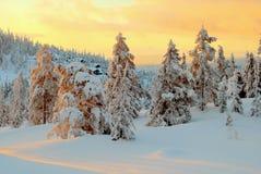Norefjell, Norvegia Immagini Stock