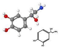 Norepinephrin stock abbildung