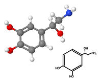 Norepinephrine Stock Image