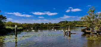 Norfolk Broads. A calm, quiet stop in the middle of the Norfolk Broads, England royalty free stock image