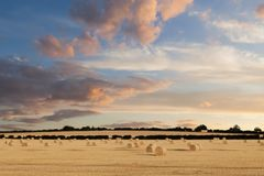 Norfolk hay bales basking in the sunset glow Stock Images