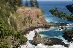 Norfolk Island Cliff and coast Royalty Free Stock Photography