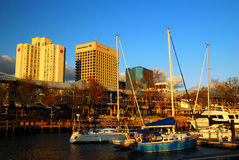 Norfolk skyline. View of the Norfolk Virginia Skyline from the Waterfront Royalty Free Stock Images