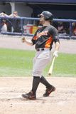 Norfolk Tides' Russ Canzler Royalty Free Stock Photo