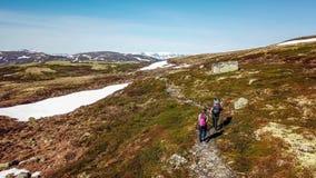 Norge - ett par som fotvandrar i den höglands- platån royaltyfria foton