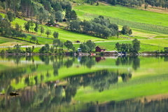 Norge - fjord reflexion Arkivfoton