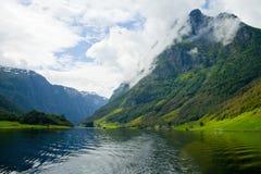 Norge fjordar Arkivfoto