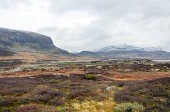 Norge högland Arkivbild