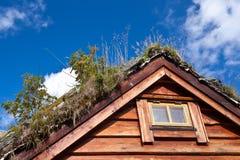 Norge - lantgårdhus Arkivfoton