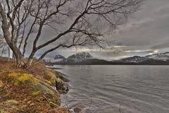 Norge natur Arkivbild